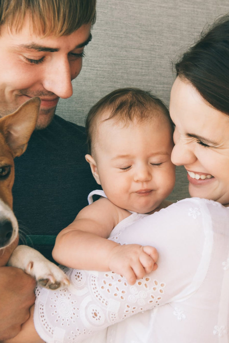 Bebe i psi – nerazdvojni prijatelji