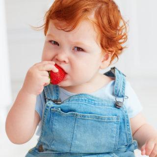 Alergija na hranu kod beba
