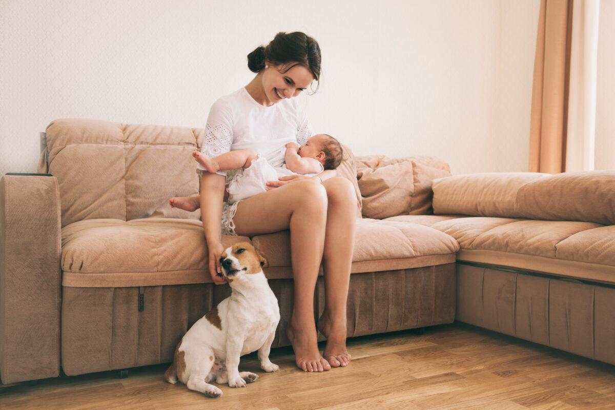 Priprema kućnih ljubimaca za dolazak djeteta na svijet